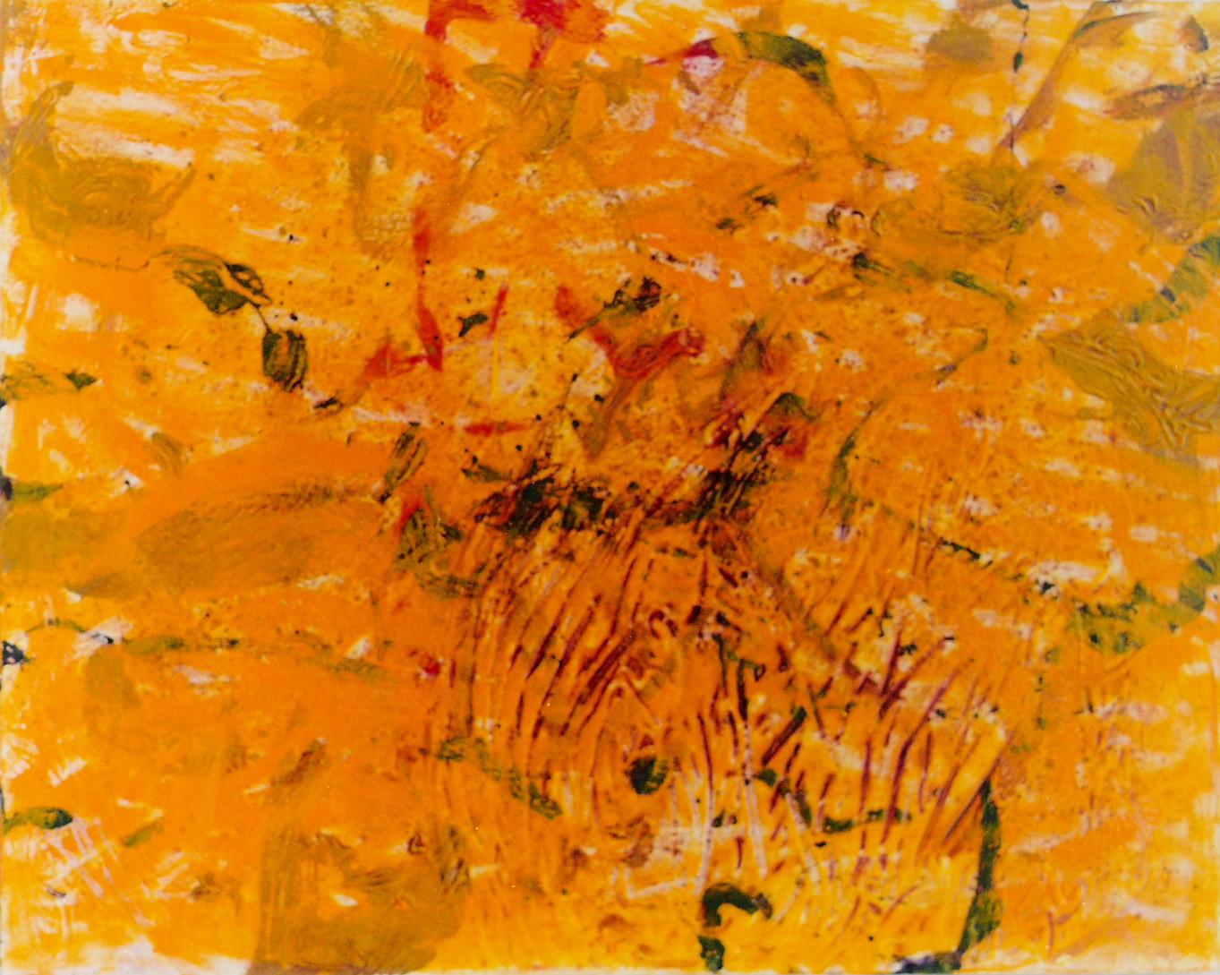 soleil tigre 81X65